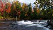 Travel Canada Framed Prints - Oxtongue river Ontario Autumn Scenery Framed Print by Oleksiy Maksymenko