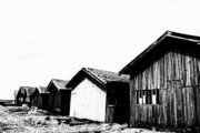 D.w. Prints - Oyster breeding sheds at Laramos Port on Bassin dArcachon Print by Sami Sarkis