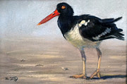 Beach Pastels Originals - Oyster Catcher by Deb LaFogg-Docherty