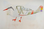 Flight Sculpture Prints - Oyster Catcher Print by Virginia Stuart