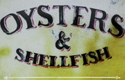 Country Art Mixed Media Posters - Oysters and Shellfish Art Print Poster by adSpice Studios