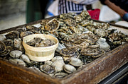Farms Art - Oysters at the Market by Heather Applegate