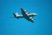 Blue Airplane Photos - P 3 Orion by Michael Peychich
