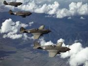 U.s Army Photo Posters - P-40 Pursuits Of The U.s. Army Air Poster by Luis Marden