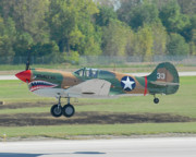 Gathering Photos - P-40 Warhawk by Alan Toepfer