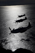 World War Ii Photo Posters - P-51 Cavalier Mustang With Supermarine Poster by Daniel Karlsson