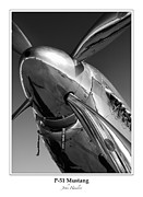 North American P51 Mustang Prints - P-51 Mustang - Bordered Print by John  Hamlon