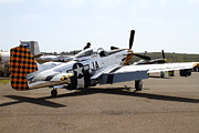 Shows Posters - P-51 Mustang Airplane . 7d15737 Poster by Wingsdomain Art and Photography