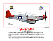 World War Two Photo Posters - P-51C Daisy Mae Profile Poster by Jerry Taliaferro