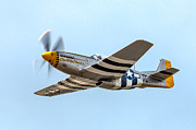 P-51 Photo Posters - P-51D Mustang Poster by Bill Lindsay