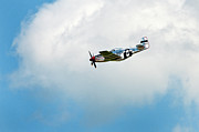 P51 Photo Posters - P-51D Mustang Poster by Murray Bloom
