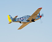 Tom Dowd - P51 Liftoff
