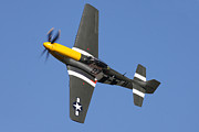 Bomber Escort Photo Posters - P51 Mustang Cadillac of the skies Poster by Ken Brannen