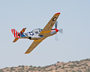 Tom Dowd - P51 Wheels Up