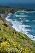 Pacific Ocean Prints Posters - Pacific Coast Shoreline I Poster by Steven Ainsworth