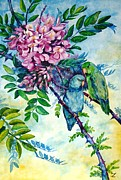 Most Prints - Pacific Parrotlets Print by Zaira Dzhaubaeva