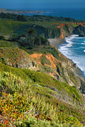 Pacific Ocean Prints Prints - Pacific Shoreline VII Print by Steven Ainsworth