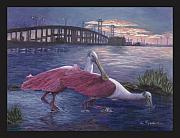 Spoonbill Paintings - Packery Sunset by Linda Speaker