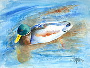 Mallards Paintings - Paddling Along by Arline Wagner