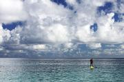 Break Fast Photos - Paddling in the Open by Vince Cavataio - Printscapes