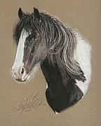 Gypsy Stallion Posters - Paddy Poster by Terry Kirkland Cook