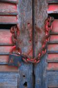 Padlock And Chain On Wooden Door Print by Carson Ganci