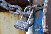 Familiar Object Posters - Padlock And Chain Poster by Photo Researchers, Inc.