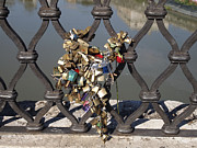 Fencing Photo Framed Prints - Padlocks on bridge. Rome Framed Print by Bernard Jaubert