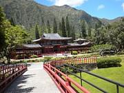 Silvie Kendall - Pagoda