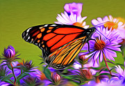 Award Digital Art Posters - Painted Butterfly Poster by David Kehrli