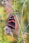 Mixed Media Originals - Painted Butterfly by James Steele