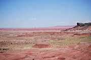 Painted Hall Metal Prints - Painted Desert Metal Print by Judy Hall-Folde