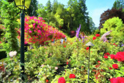 Vancouver Island Originals - Painted Gardens by Lawrence Christopher