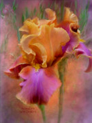 Print Mixed Media Posters - Painted Goddess - Iris Poster by Carol Cavalaris