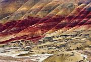 Clay Framed Prints - Painted Hills Contour Framed Print by Mike  Dawson