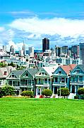 Painted Ladies Prints - Painted Ladies Print by Greg Fortier