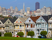 Painted Ladies Framed Prints - Painted Ladies Framed Print by Jack Schultz
