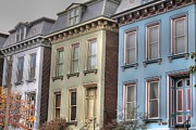 French Home Prints - Painted Ladies Print by Jane Linders