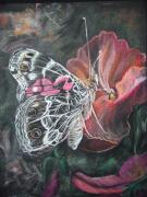 Painted Pastels - Painted Lady on a pansy by Bonnie Peacher