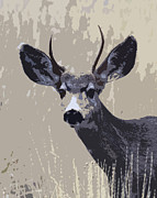Bugel Prints - Painted Mule Deer Buck Print by Steve McKinzie