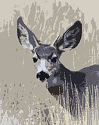 Bugel Prints - Painted Muley Print by Steve McKinzie