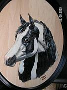 Pet Portraits Pyrography - Painted Pony.  by John Tatham