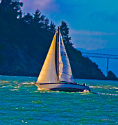 San Rafael Bridge Posters - Painted Sails Poster by Mitch Shindelbower
