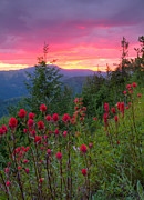 Mountain View Photos - Painted Sky by Idaho Scenic Images Linda Lantzy