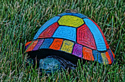 Mick Anderson - Painted Turtle Sprinkler
