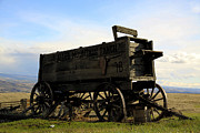 Horse And Buggy Prints - Painted Wagon Print by Steve McKinzie