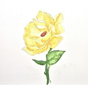 Painted Paintings - Painted Yellow Rose by Marsha Heiken
