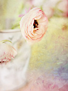 Flypaper Textures Photos - Painterly Pink Ranunculus in Vase by Susan Gary