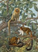 Animals In Art Framed Prints - Painting Of Marmosets In The Jungle Framed Print by Elie Cheverlange
