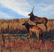 Elk Paintings - Pair o Bulls by Mary Benke